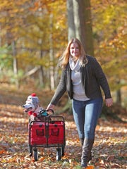 Stephanie McPeak takes 8-year-old pit bull Willing for a walk at Carousel Park. Willing, also known as Willie, only has three legs, and McPeak uses a wagon to give him a break from long walks.