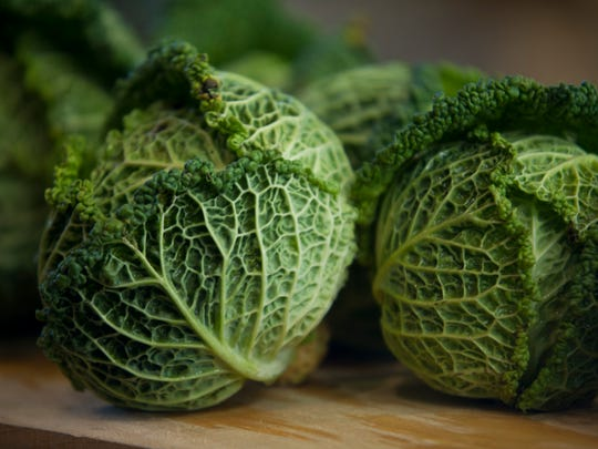 Savoy cabbage, reminiscent of the colors of fresh spring growth, can be found even on the coldest day in winter during the winter farmers market hosted at Memorial Auditorium in Burlington.