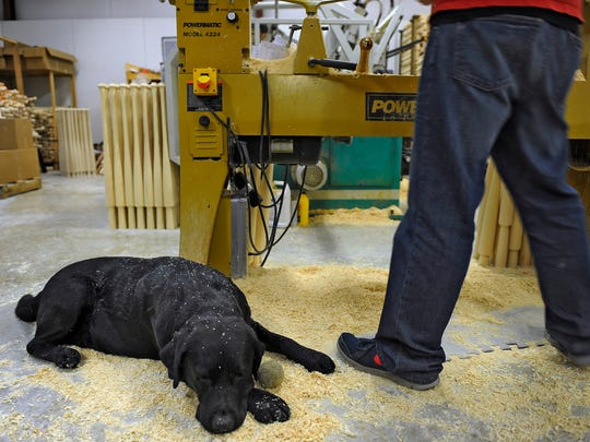 Riley the shop dog lies in saw dust Wednesday at Old Hickory Bat Co. in Goodlettsville.