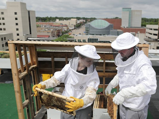 636634549489584090-APC-Rye-roof-bees-0913-053118-wag.jpg