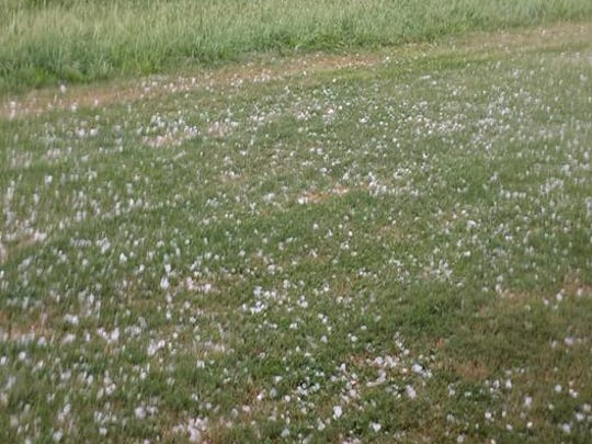 Hail lays in a field near Latimore Valley Road in York Springs on Tuesday morning.