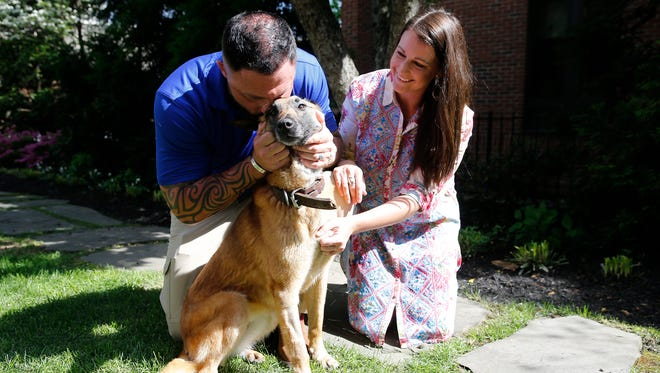 U.S. Air Force Staff Sergeant Adam Wylie of Bethel, left, and his wife, Kelly, are reunited with Emra, a retired military working dog Thursday April 20, 2017. Emra and Staff Sgt. Wylie served together for two years (2012 - 2014) in South Korea. The Military dog reunification is a partnership between Crown Media Family Networks and American Humane Association scheduled the meeting at the Residence Inn downtown Cincinnati. Emra is a 9-year-old Belgian Malinois.