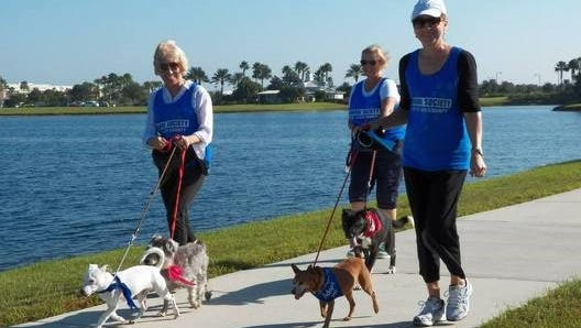 Kathy, Debbie and Lenora had a great time at the last Paws in the Park.
