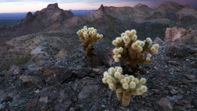 Arizona would consider taking control of public lands, such as the Eagletail Mountains Wilderness outside of Tonopah, under legislation proposed by Rep. Mark Finchem, R-Tucson.