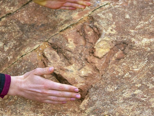 Dinosaur Tracks Destroyed
