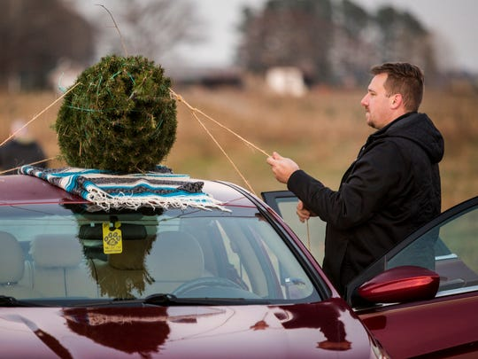 Tom Garrett ties his Christmas tree town to the roof of his car after cutting the tree down with his family at Coleman's Christmas Tree Farm in Middletown on Wednesday afternoon.