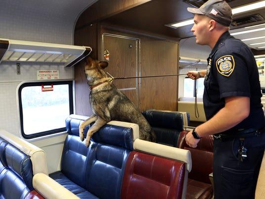 MTA police canine
