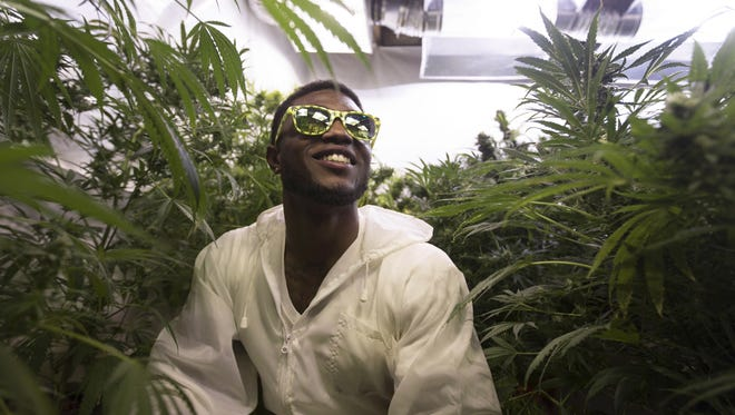 Treyous Jarrells sits in the grow room in his basement apartment filled with about 20 marijuana plants.