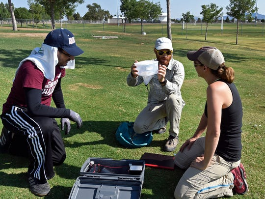 A team of researchers collect mosquitoes in Las Cruces for an New Mexico State University contract with the New Mexico Department of Health. From right, Kalli Martinez, project manager; Daniel Carter, graduate student in geography and Carlos Yeelot, second-year medical student at the Burrell College of Osteopathic Medicine, set up a device to trap mosquitoes at a soccer field.