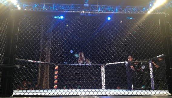 The Ultimate Fighting Championship's Octagon.