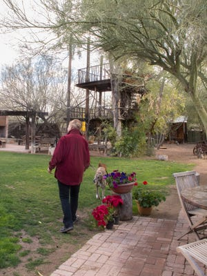 Janie Ellis and her dogs enjoy the backyard, which features numerous seating areas, an outdoor fireplace, and even a tree fort. Janie grew up on the property and now maintains it as an artist compound and residence.