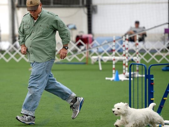 William Sanders of Seattle, Wash., runs the agility course with Twizzle Tuesday morning at In The Net.