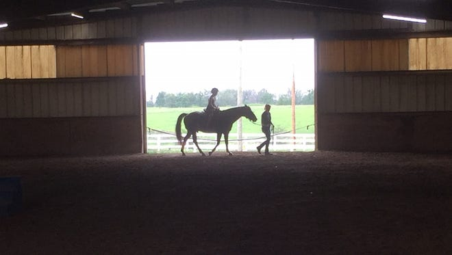 St. Elizabeth offers a Equine Grief Camp to children ages 9 to 17.