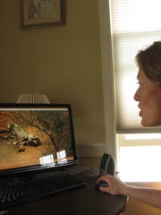 Ashley Prout McAvey, a Shelburne resident, discusses an image on her computer screen of an African elephant butchered for its ivory.