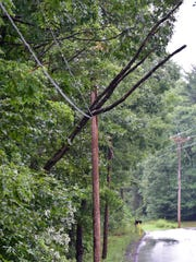 A tree rests on power lines in the 10,000 block of