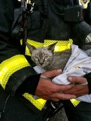 """Driver-engineer Jacob Cotoure holds """"Smokey"""" the kitten"""