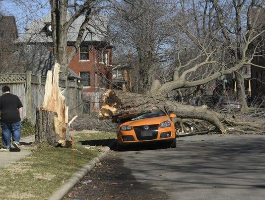 636245824836102563-tree-car-down-2.jpg