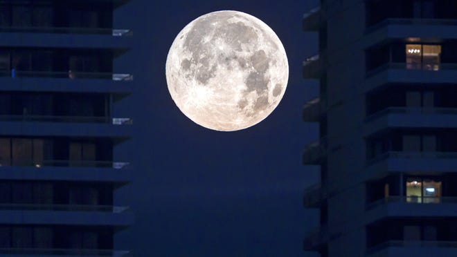 The full moon sets between the towers of Trump Plaza in West Palm Beach before sunrise Tuesday, February 19, 2019. The full moon was at its closest point to earth than any other this year.