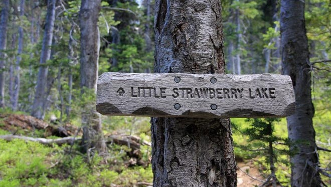 A sign points the way to Little Strawberry Lake in the Strawberry Mountain Wilderness.