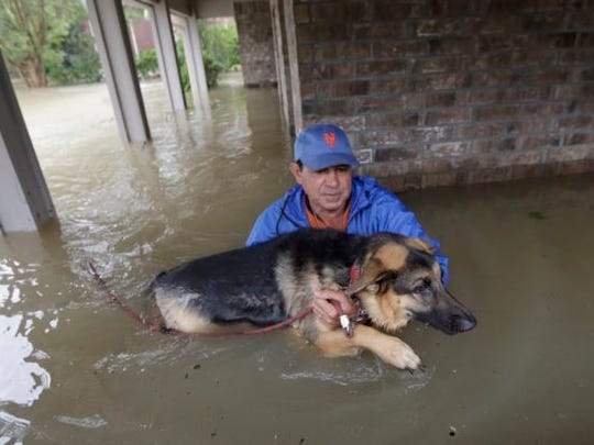Former El Paso Independent School District Superintendent Lorenzo García was photographed rescuing his dog from his home in Spring, Texas, in the flooding that followed Hurricane Harvey.