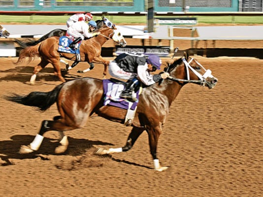 Courtesy Gay HarrisEllen Kennedy Racing LLC's Houdini, winner of last year's Grade 1, 1,048,682 Rainbow Derby, takes on a deep field of older horses over 400 yards in the 50,000 Mr Jet Moore Stakes on Sunday afternoon.