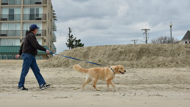 Alex Krawchuk of Millsboro walks his dog, Travis, next to a sand cliff that formed from the latest nor'easter that hit Rehoboth Beach.