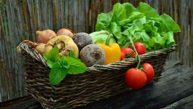 """Participants will learn how to plan, plant and care for their garden as well as how to harvest and cook the vegetables that they grow at the six-week gardening series entitled """"Seed to Supper – Gardening on a Budget"""" at the Newburgh Armory starting March 28."""