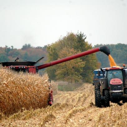 Mexican retaliation could hurt corn farmers