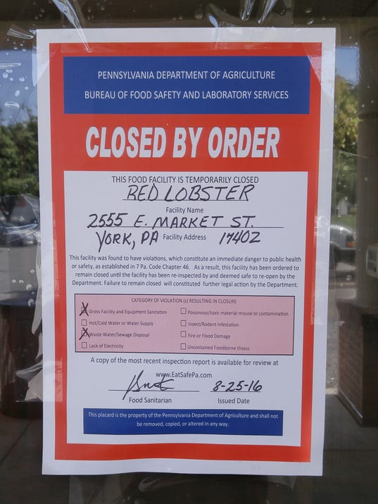 red lobster 4ps At red lobster, our passion for seafood drives how we create every dish, and comes through in how we source our seafood, and give back to our communities.