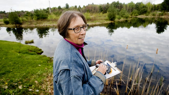 Free Press reporter Candace Page listens for spring peepers at a small pond off Watkins Road in Milton on Wednesday April 28, 2010.