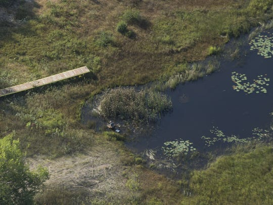 A section of dock is surrounded by weeds in water-depleted