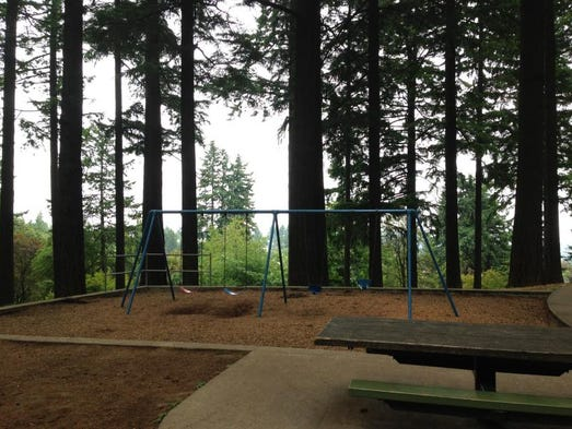 A swing set located within the playground area of Mt. Tabor Park in Southeast Portland.
