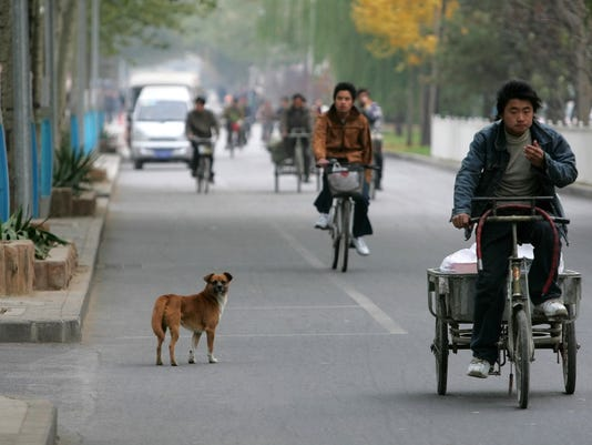 CHINA_DOGS_ON_THE_RUN_BEJ105.jpg