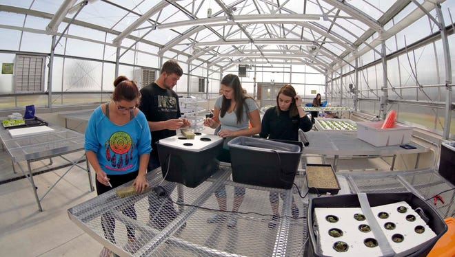Plymouth students work on planting seeds at the new Plymouth Food Science and Agriculture Center Wednesday October 21, 2015 in Plymouth.