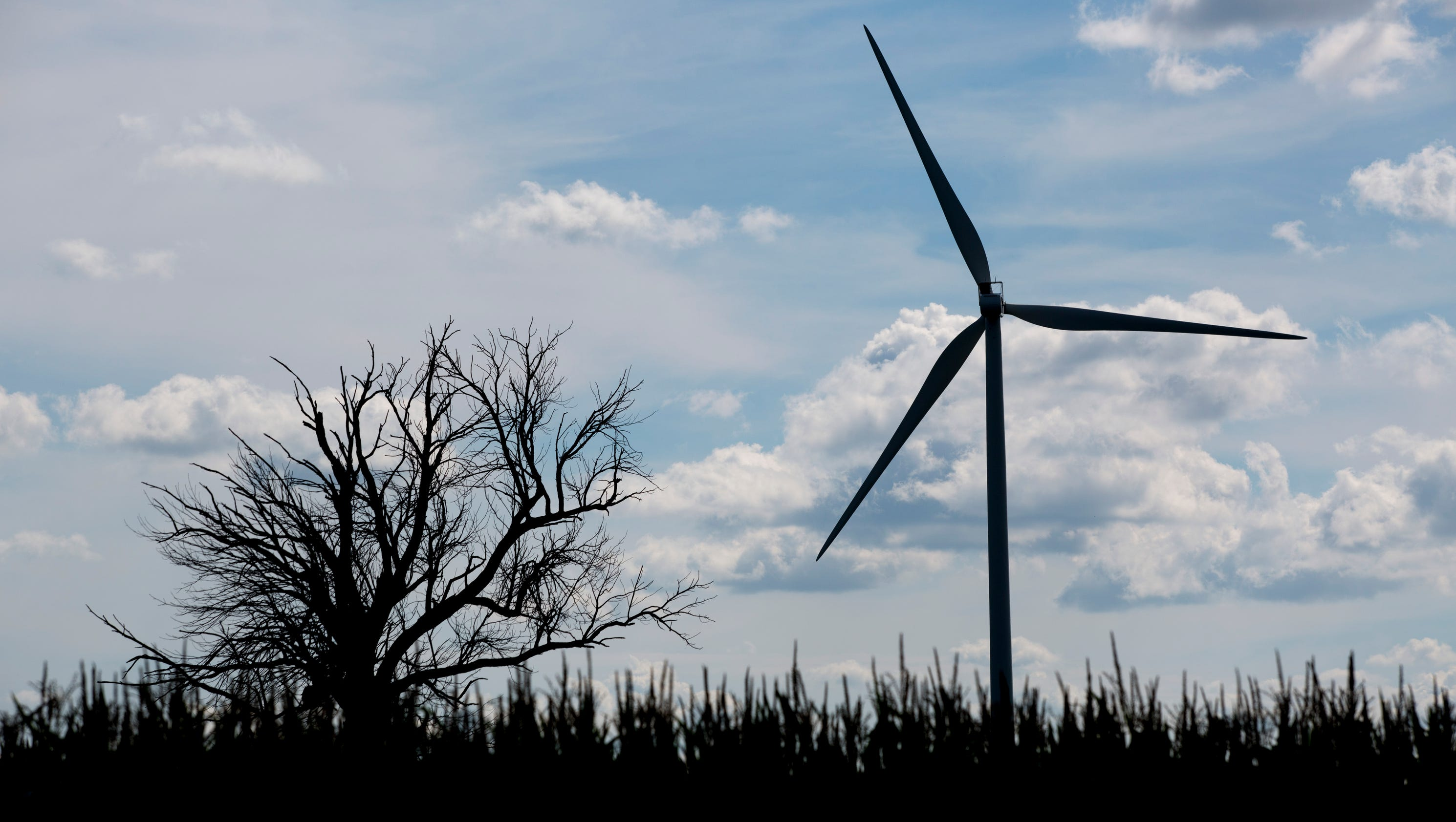 Wind turbines The money and the myths