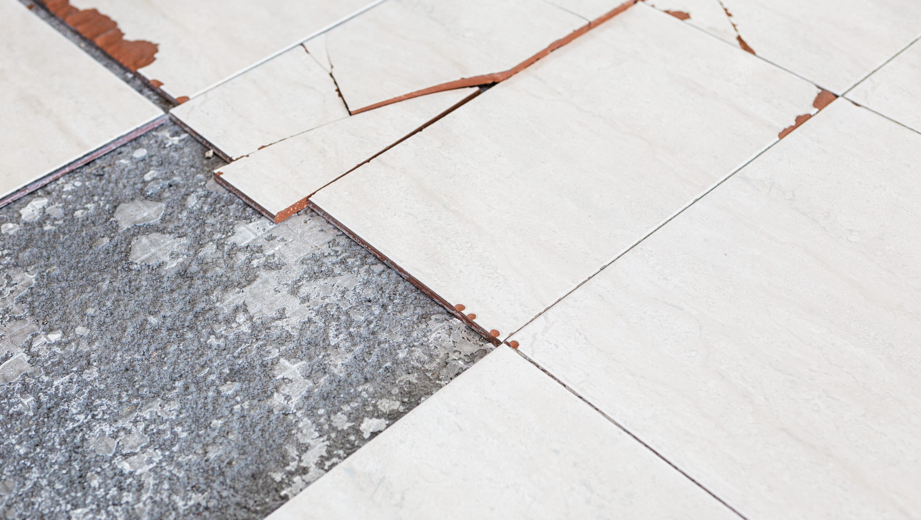 Tiles or glue may contain asbestos homeowner says dailygadgetfo Gallery