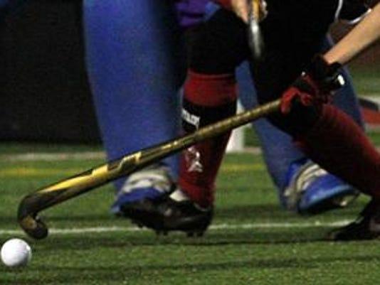 -webartsportsfieldhockey2.jpg_20140621.jpg