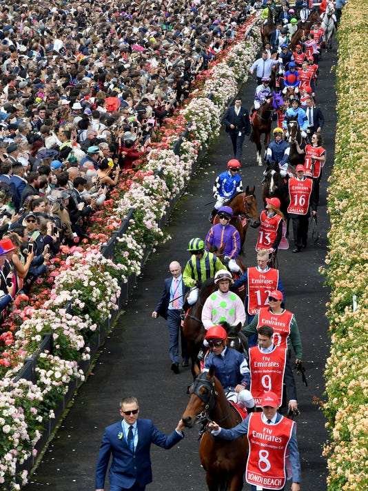 The field enter the track before the start of the Melbourne Cup at Flemington Racecourse in Melbourne, Australia, Tuesday, Nov. 7, 2017. (AP Photo/Andy Brownbill)