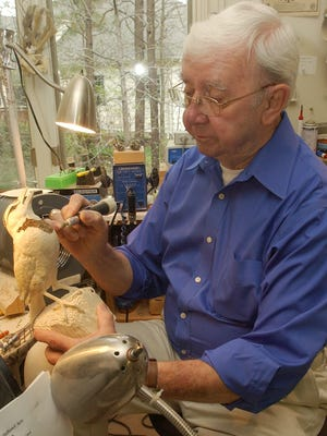 World Class professional waterfowl carver Ernie Muehlmatt of Salisbury  carves on a meadowlark at his home in April 2007.