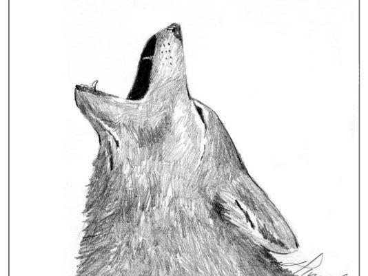 coyote_howl.jpg