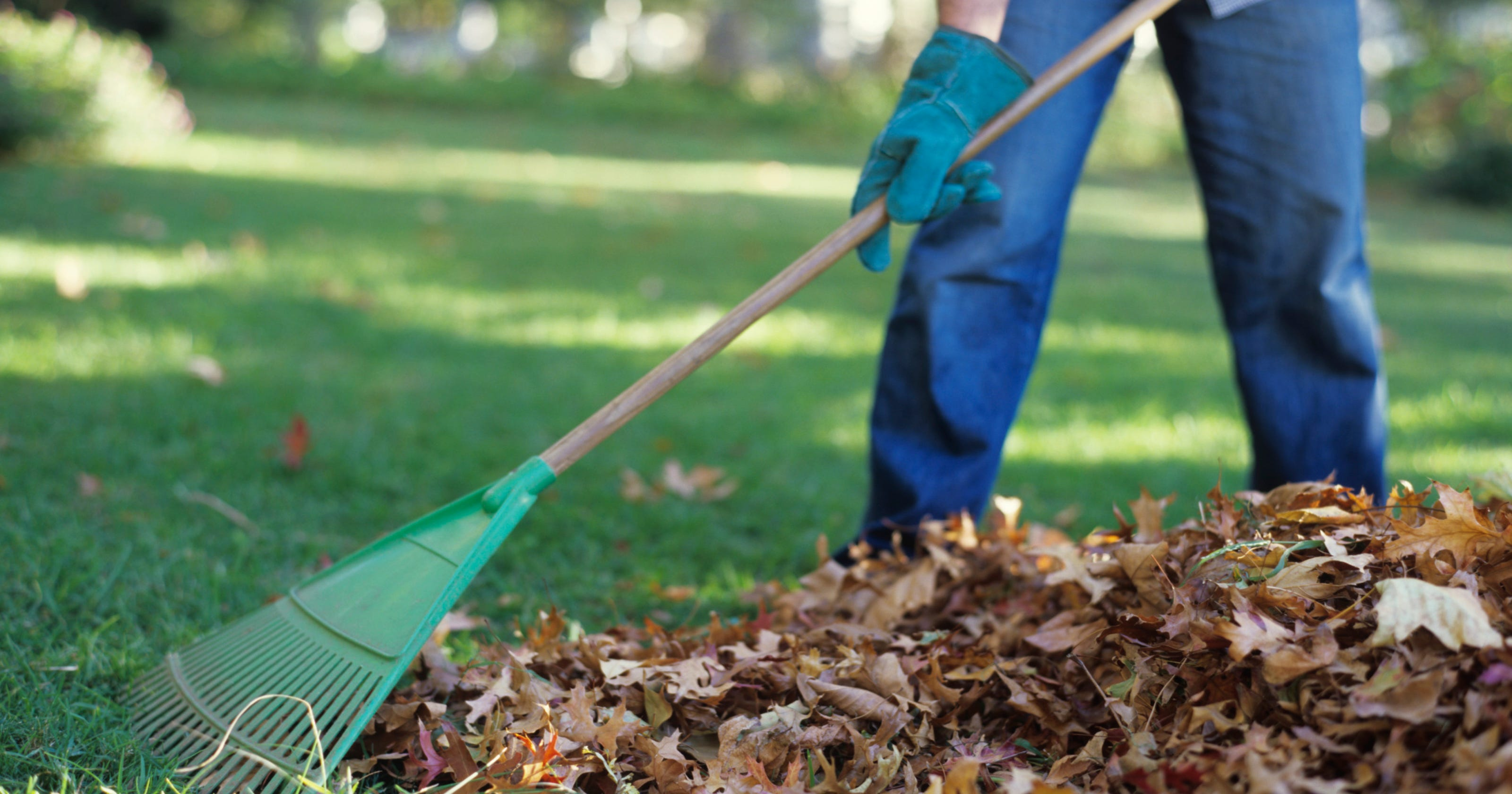 Louisville board bans plastic bags for yard waste