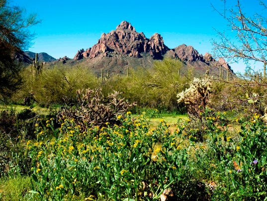 View of ragged top mountain at ironwood forest national monument