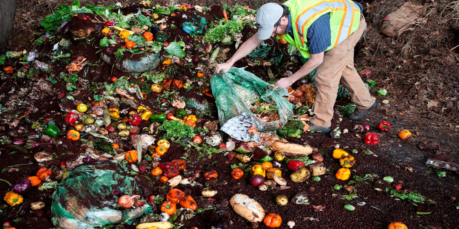 As Vermont's July 1 landfill ban nears, how and where can you toss food scraps?