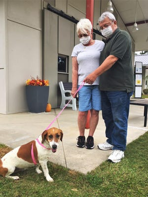 The Cordas adopted Basset Hound mix Paislee through the FOTAS veteran/military adoption program. [Friends of the Animal Shelter].
