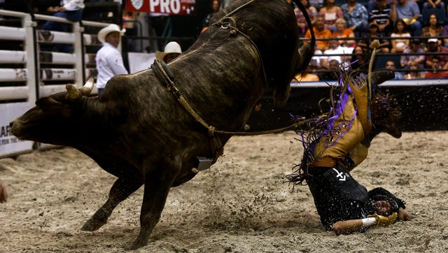 Scenes from PBR's Big Bull Tour event at Germain Arena on Saturday, August 2, 2014.