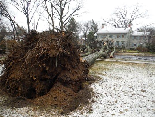 Tree-down-on Fairmont Road in Ridgewood