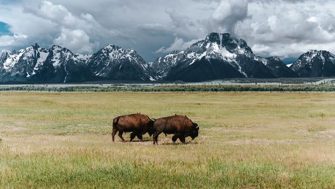 Grand Teton National Park is pictured.
