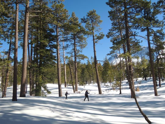 Nobles Emigrant Trail in Lassen Volcanic National Park is a nice option for a winter adventure.