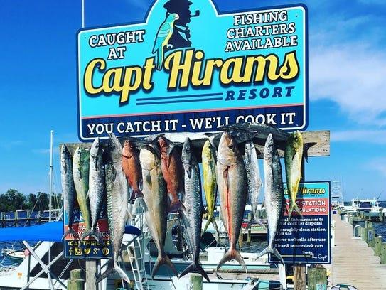 Capt. Hiram's Resort