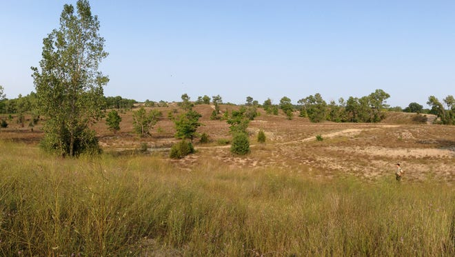 A large portion of the Spring Mill property in Island Lake is to be mined for sand for 10 years and then reclaimed by nature. It was once one of the largest gravel pits east of the Mississippi.